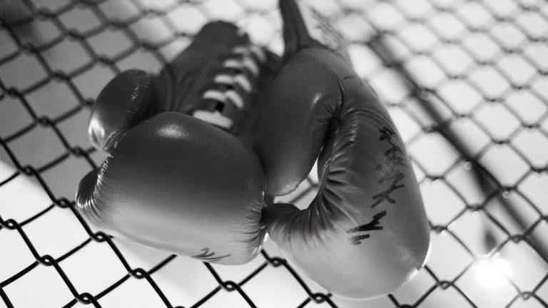 Professionele bokshandschoenen